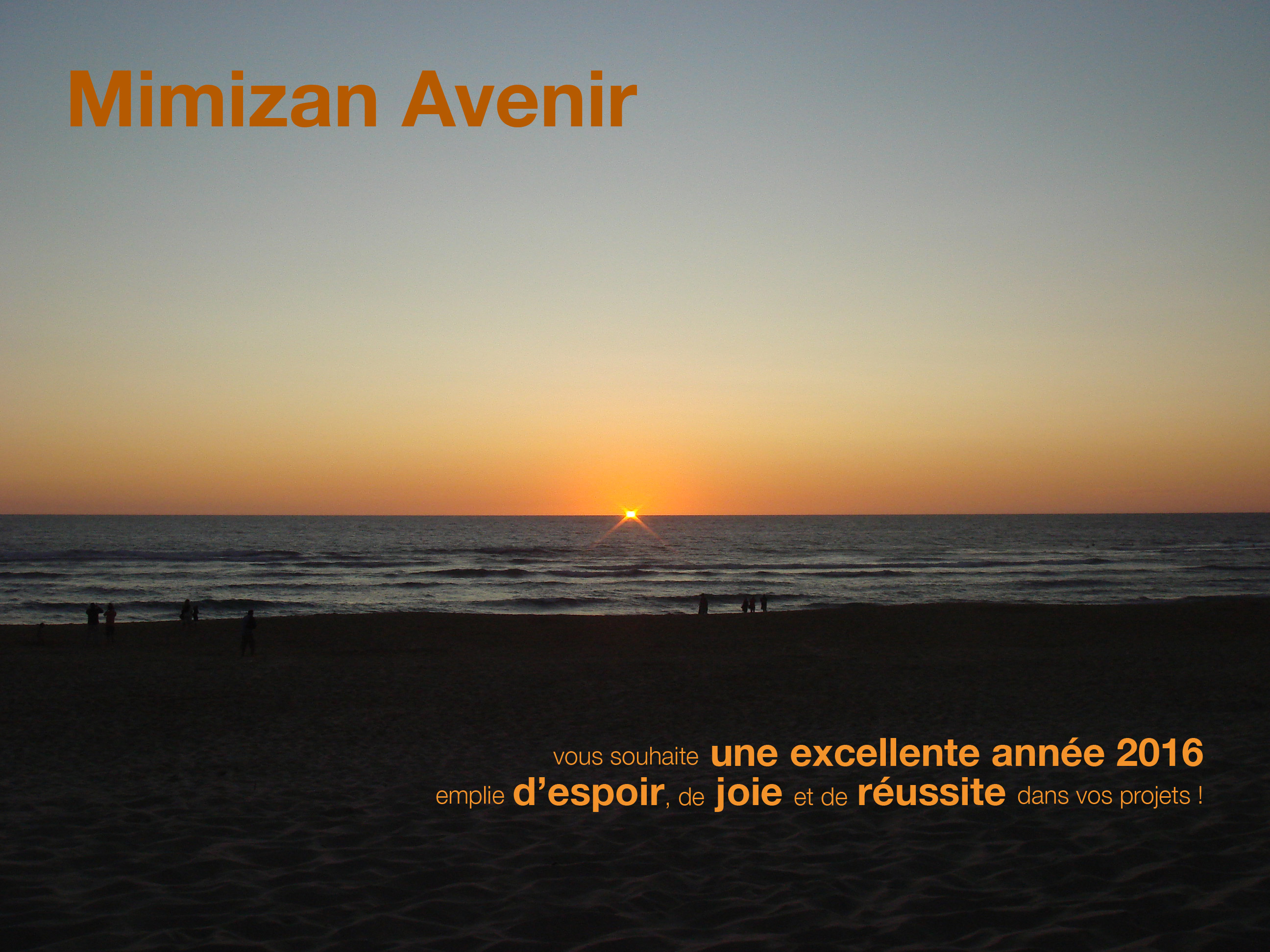 mimizan avenir voeux 2016 - version CB - Copie copie